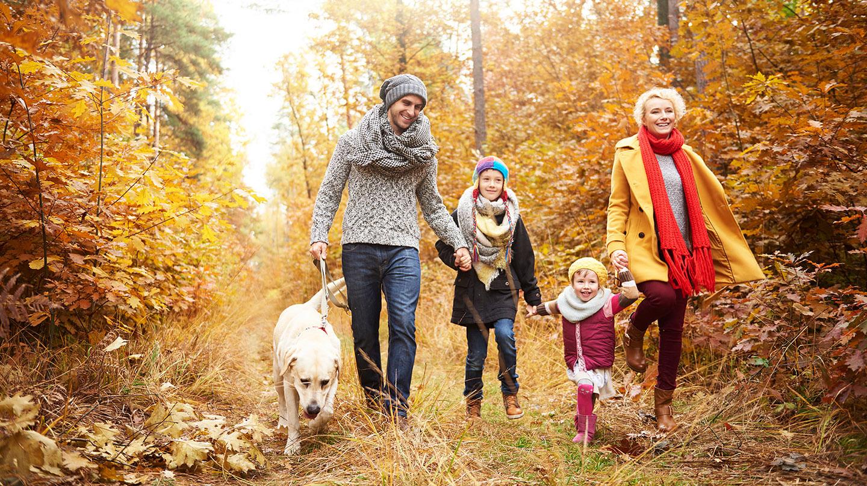 Herbstblues: Junge Familie mit zwei kleinen Kindern und Hund spazieren gut gelaunt durch den Herbstwald.